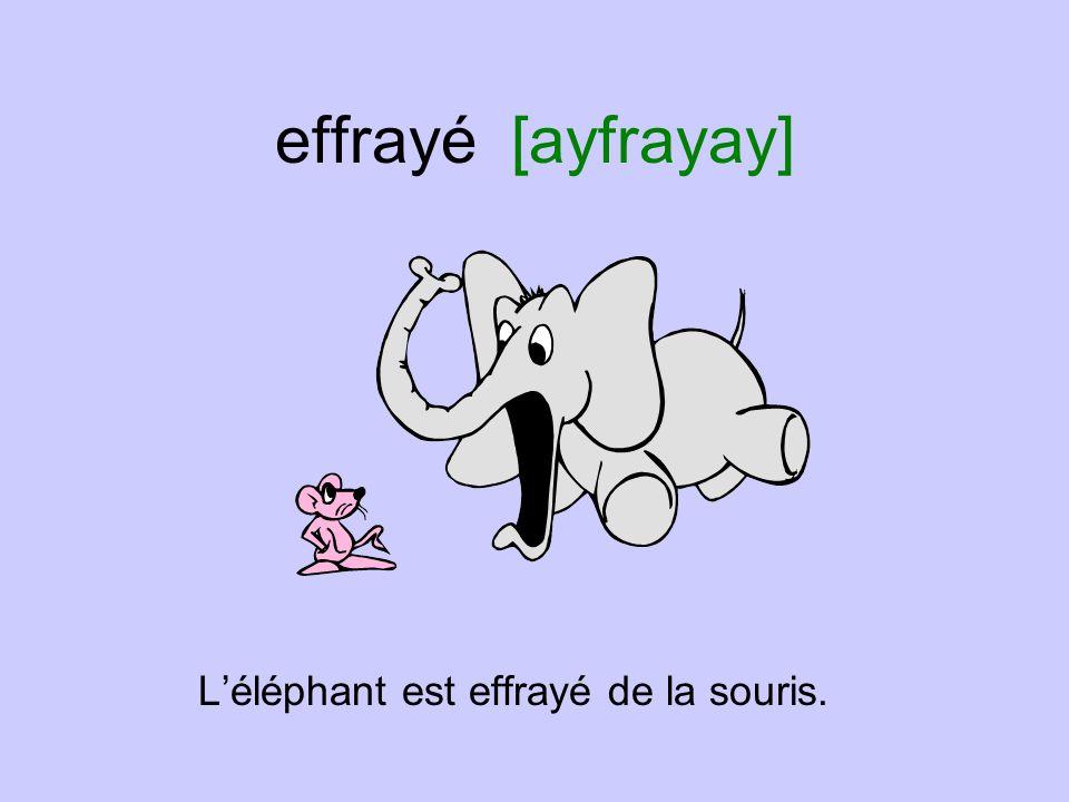 effrayé [ayfrayay] L'éléphant est effrayé de la souris.